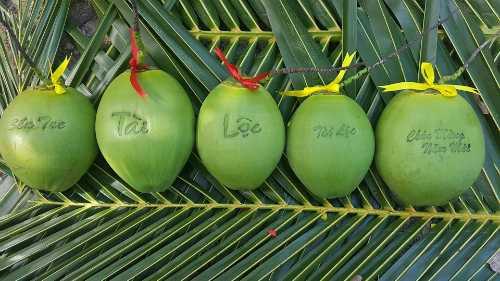 Dừa in chữ có giá 300.000-500.000 đồng mỗi trái.