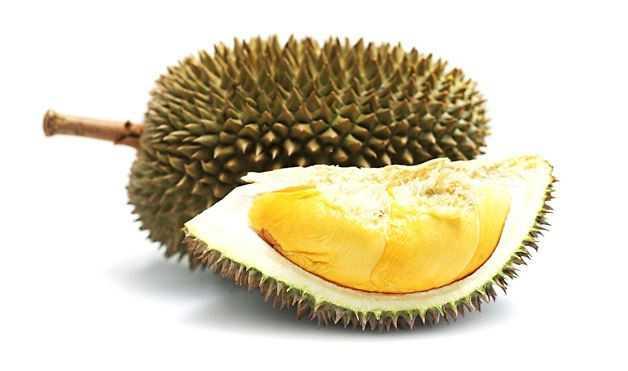 Theo y học cổ truyền phương Đông, sầu riêng có tính nóng, nên làm tăng tiết mồ hôi. Để trung hòa, nên ăn kèm với măng cụt, loại trái cây có tính mát.