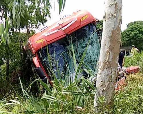 Ôtô khách chỉ dừng chạy khi lao vào cây bên vệ đường. Ảnh: Đ.H
