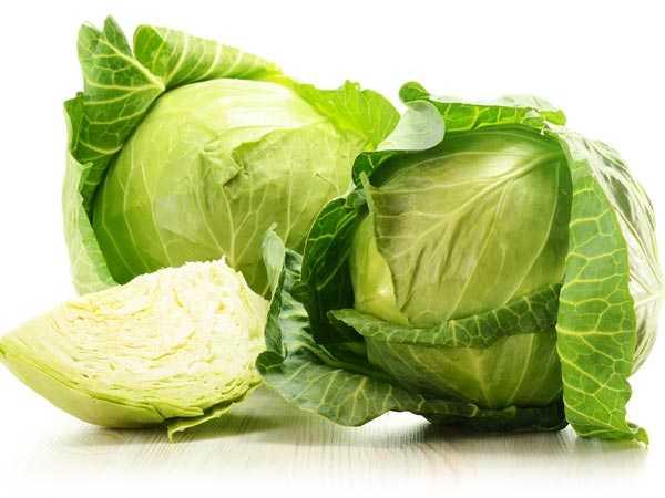 08-1488969348-cabbage