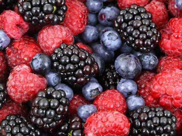x08-1488969333-berries.jp