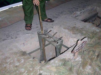 soi-nhung-loai-bay-o-viet-nam-khien-linh-my-khoc-thet-hinh-7 8