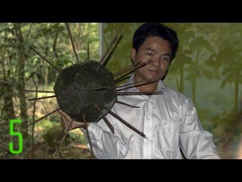 soi-nhung-loai-bay-o-viet-nam-khien-linh-my-khoc-thet-hinh-9 9