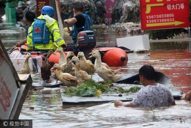 hunan-flooding5-1499138687_680x0 8