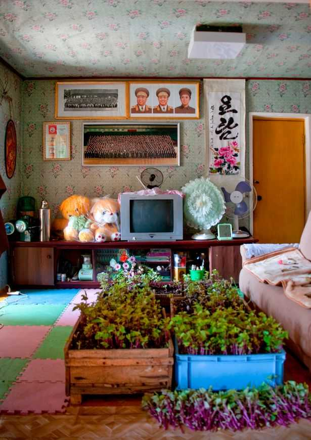 PAY-AIRBNB-IN-NORTH-KOREA (4)