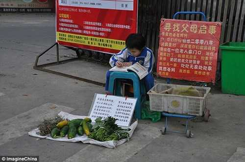 3d9236ea00000578_4252766_she_put_a_signboard_next_to_her_vegetable_stall_which_was_a_lett_a_1_1487923240585_fwcv