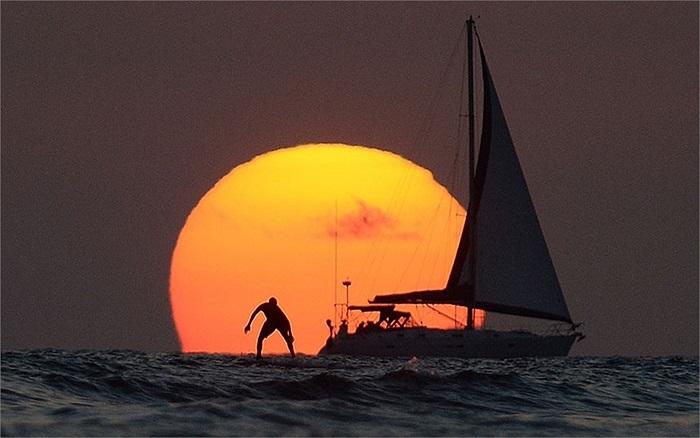 Lướt sóng trong hoàng hôn ở Honolulu, Hawaii