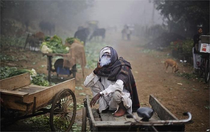 Người lao động tay chân Ấn Độ hút thuốc lá trên chiếc xe của mình vào một buổi sáng sương mù ở New Delhi