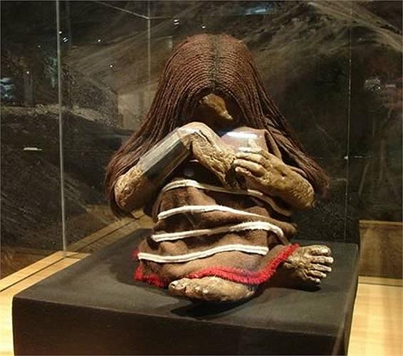 Các Plomo Mummy trong tiếng Tây Ban Nha là xác ướp của đứa trẻ Inca được tìm thấy trên Cerro El Plomo vào năm 1954. Xác ướp được bảo quản và trưng bày tại Bảo tàng Quốc gia Lịch sử Tự nhiên ở Santiago, Chile.