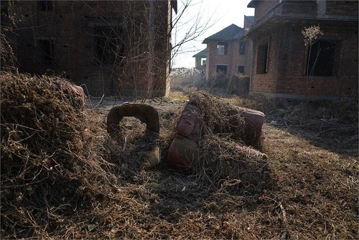 Sau nhiều năm bỏ hoang, lau sậy bao vây xung quanh thậm chí cao đến 2m, nhiều bức tường đã rất cũ.