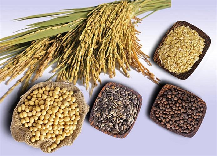 Ngũ cốc nguyên hạt cho làn da mịn màng và dưỡng ẩm, đây là thực phẩm tốt giúp giảm tổn thương da, mụn trứng cá và góp phần hạn chế hình thành vảy và khô. Mầm lúa mì cung cấp biotin-vitamin B .
