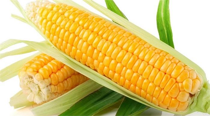 Ngô là thực phẩm tuyệt vời với carotenoids- lutein giúp da tránh khỏi tác hại ánh nắng mặt trời.