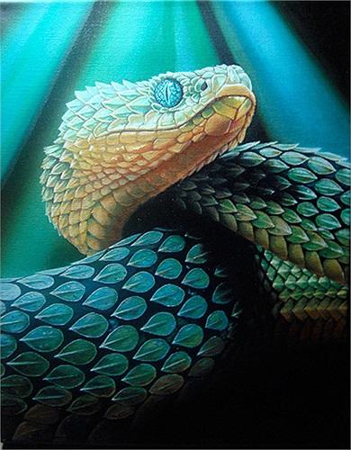 Chiếm số lượng đông đảo nhất là loài rắn Viper. Người dân tin rằng, chúng là bầy tôi của Chor Soo Kong, tức vị thần của đền.