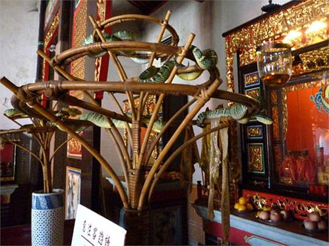 Mặc dù không phải ngôi đền lớn, nhưng Penang được coi là ngôi đền bí ẩn và hấp dẫn du khách hàng đầu Malaysia.