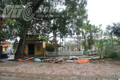Nghĩa trang thôn Trai Trang