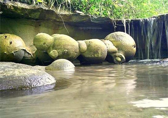 Điều kinh ngạc là trong và sau mỗi trận mưa, đá Trovants ở làng Costesti mọc lên như… nấm. Những hòn đá cứ thể lớn lên, phình to một cách kỳ lạ.