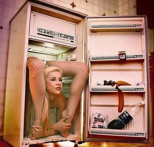 Nằm gọn trong tủ lạnh