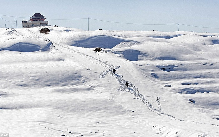 Những trận tuyết rơi khiến dân cư trong khu vực bối rối vì chưa quen đối phó với thời tiết này