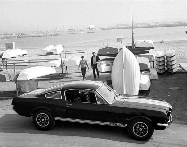 Tận dụng thành công của dòng xe thể thao này, Ford tung tiếp phiên bản thứ 3 Shelby Mustang GT 350H trong năm 1966.