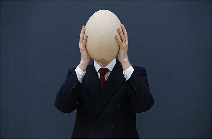 Quả trứng hóa thạch của loài chim voi được đem bán đấu giá ở London