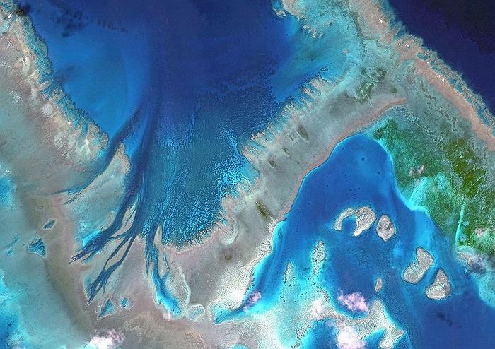 Rạn san hô lớn nhất thế giới ở Australia