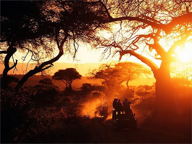 Vườn quốc gia Tarangire, Tanzania: Một trong những khu bảo tồn thiên nhiên hoang dã được giữ gìn nguyên vẹn nhất hiện nay. Với những chuyến tham quan bằng xe jeep, du khách có thể quan sát rất nhiều động vật hoang dã tại nơi này.