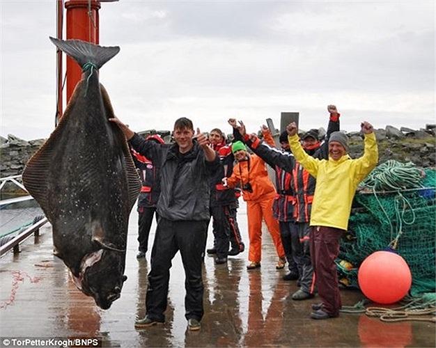 Cá bơn nặng tới 232 kg tại một vùng biển ở Na Uy