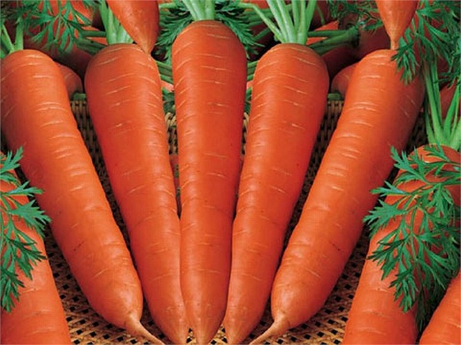 Không loại rau củ nào giàu vitamin A như cà rốt, ngoài ra nó còn giúp duy trì độ bóng cho tóc và độ mềm mại cho da.
