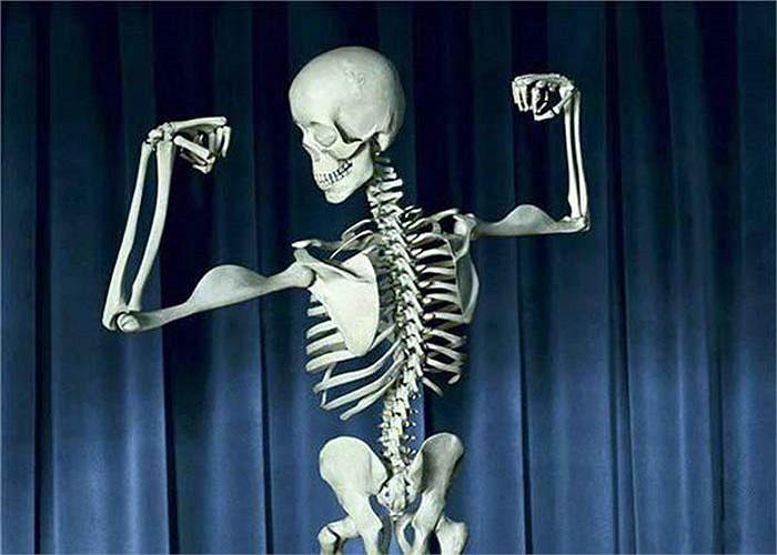 Xương của con người mạnh mẽ ngang đá granite trong việc nâng đỡ trọng lượng cơ thể. Một khối xương kích thước bằng một bao diêm có thể chịu được lực nén 9 tấn - gấp bốn lần so với bê tông.