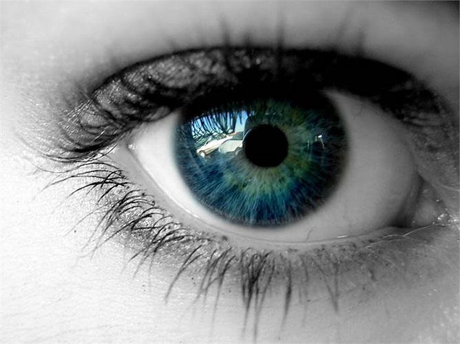 Các cơ tập trung trên mắt di chuyển khoảng 100.000 lần một ngày. Để cho cơ bắp chân của bạn di chuyển được số lần tương tự, bạn sẽ cần phải đi bộ 80km mỗi ngày.