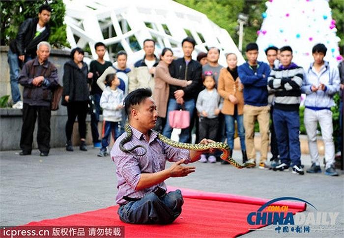 Người qua đường kinh hãi khi tận mắt trông thấy người đàn ông nuốt chửng một con rắn sống