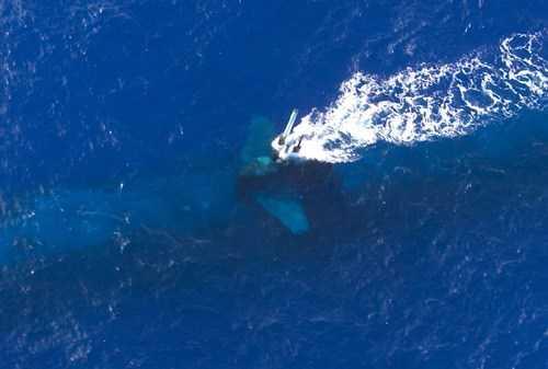 Một tàu ngầm nổi lên sát mặt nước để sử dụng kính tiềm vọng