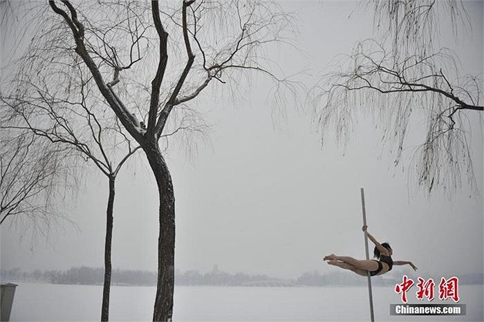 Nghề múa cột cũng được xem là nghề hot ở Trung Quốc thu hút nhiều giới trẻ