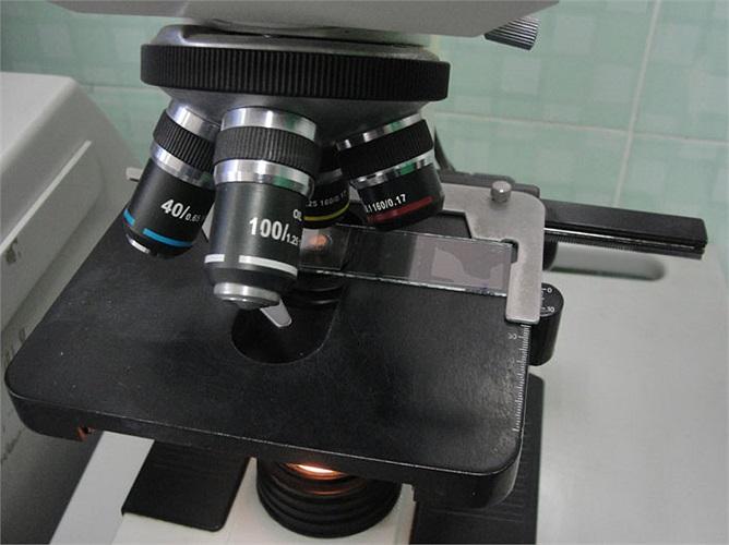 Hoặc có thể đặt dưới kính hiển vi này kết nối với máy tính