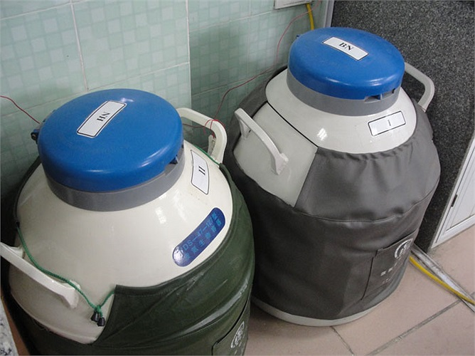 Đây là những thùng bảo quản tinh trùng.