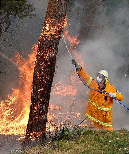 Một lính cứu hỏa đang cố dập tắt ngọn lửa trong đám cháy ở Faulconbridge, Blue Mountains, Australia
