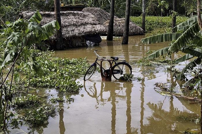 Một người đàn ông Ấn Độ vác xe đạp lên vai lội nước