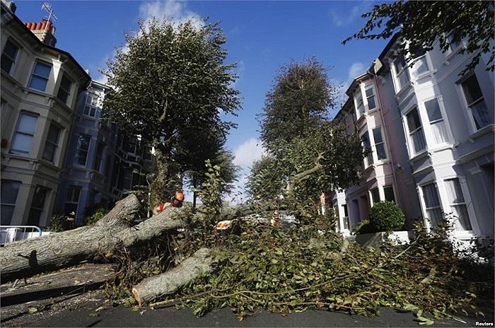 Cây đổ trên đường ở Brighton được dọn đi sau cơn bão ở phía đông nam nước Anh