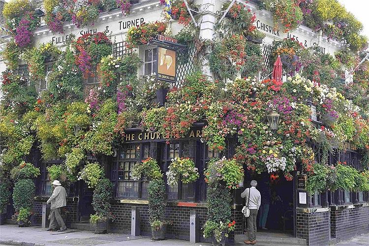 Một quán rượu mang tên Churchill Arms tại London với hàng trăm chậu hoa treo khắp phía bên ngoài