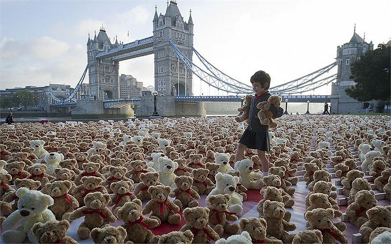Cậu bé 5 tuổi người Anh đang bước giữa 3.400 chú gấu bông trong một sự kiện tuyên truyền về bệnh viêm màng não tại London