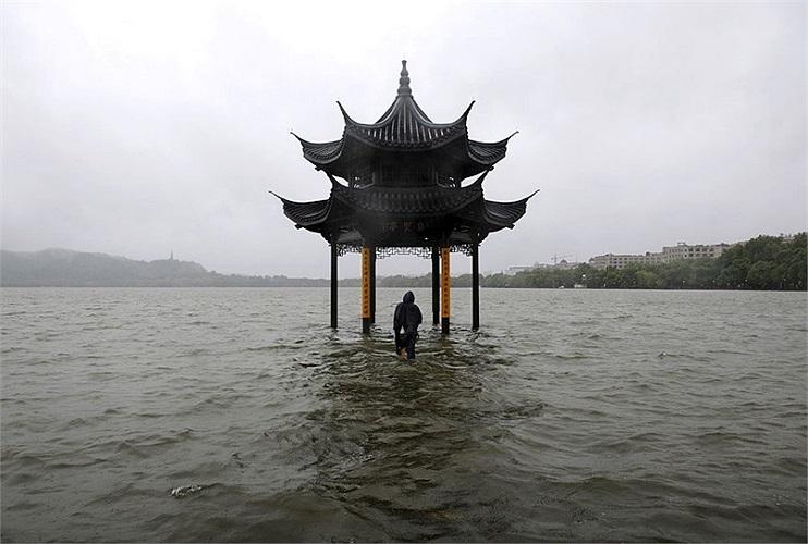 Một người đàn ông đi bộ về phía chòi ở Hồ Tây, Hàng Châu, Chiết Giang sau khi cơn bão Fitow đã nhấn chìm nơi này