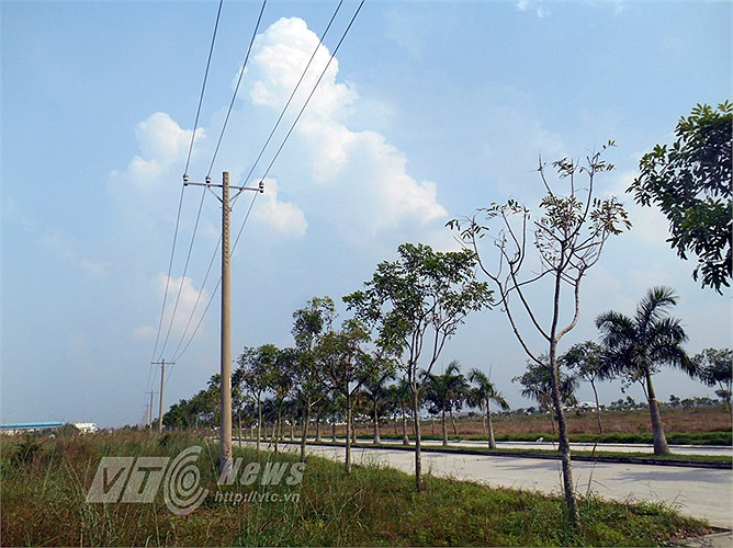 Mạng lưới điện, cây xanh, đường xá... được làm tương đối hoàn chỉnh