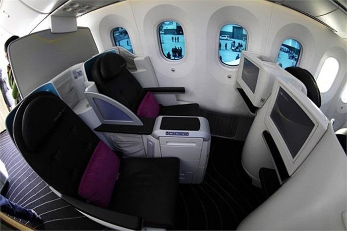 Boeing 787 Dreamliner là loại máy bay chở khách được Boeing đặt nhiều kỳ vọng khi bắt đầu đi vào hoạt động thương mại vào tháng 10/2011, nhằm cạnh tranh với sự lớn mạnh của đối thủ đến từ Pháp Airbus.