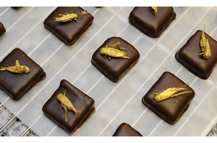Loại socola được sáng chế đặc biệt này chào bán với giá 30 USD (hơn 600 nghìn VND) cho một hộp 9 viên.