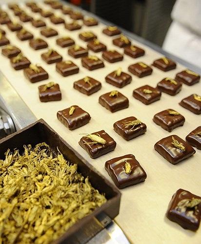 Nhà sản xuất socola hàng đầu Pháp Sylvain Musquar đã mạnh dạn đầu tư vào ý tưởng khá lạ và dị này.