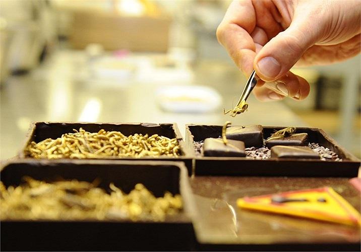 Ý tưởng sản xuất socola này hứa hẹn sẽ thu hút được nhiều người tiêu dùng.