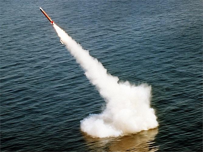 Tomahawk có thể được bắn từ tàu ngầm, các tổ hợp mặt đất, máy bay chiến đấu hay tàu khu trục tên lửa với hầm phóng đứng