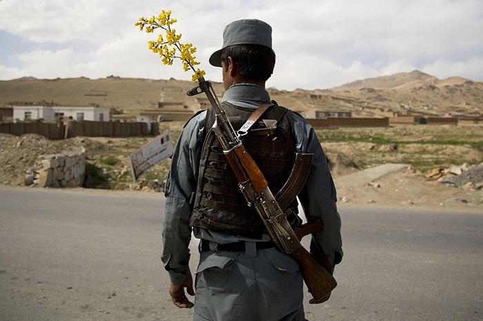 Nhân viên cảnh sát quốc gia Afghanistan và bông hoa trên nòng súng ở Maidan Shahr