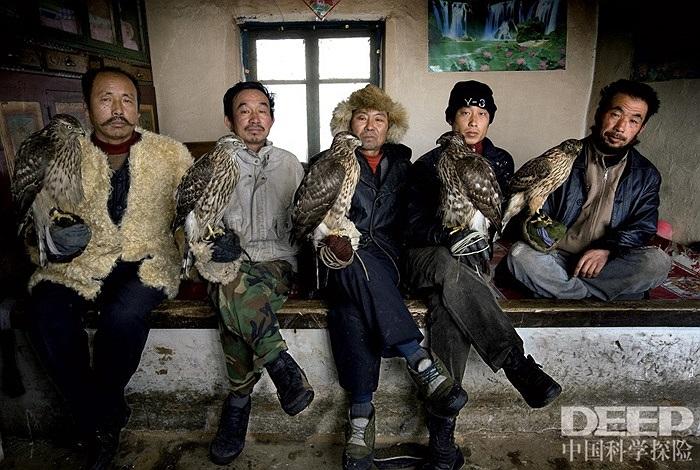 Vào mùa đông, những người nuôi chim ưng lại tụ tập trao đổi kinh nghiệm nuôi chim với nhau