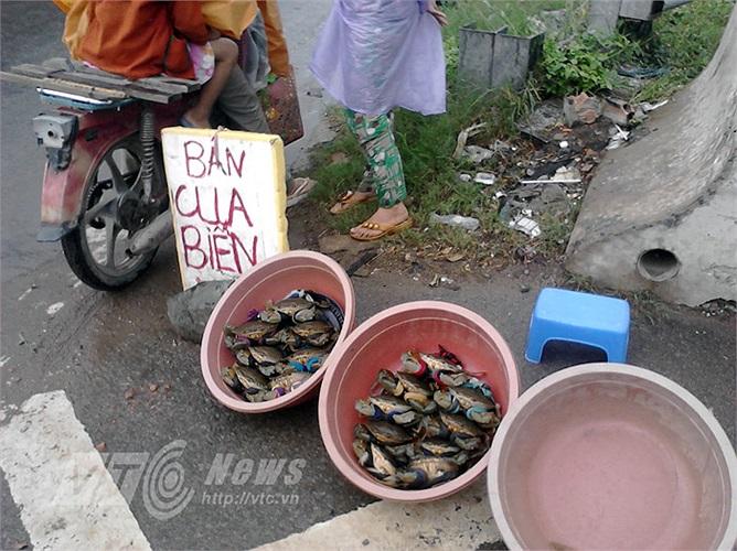 Giá cua biển dao động từ 50.000 đồng/kg đến vài trăm ngàn đồng/kg. Gọi là cua biển, nhưng thực chất, đa phần là cua nuôi (không phải cua tự nhiên). Cua có thương hiệu là cua Cà Mau (tỉnh Cà Mau). Gần đây xuất hiện trên thị trường cua Cần Giờ, TPHCM.